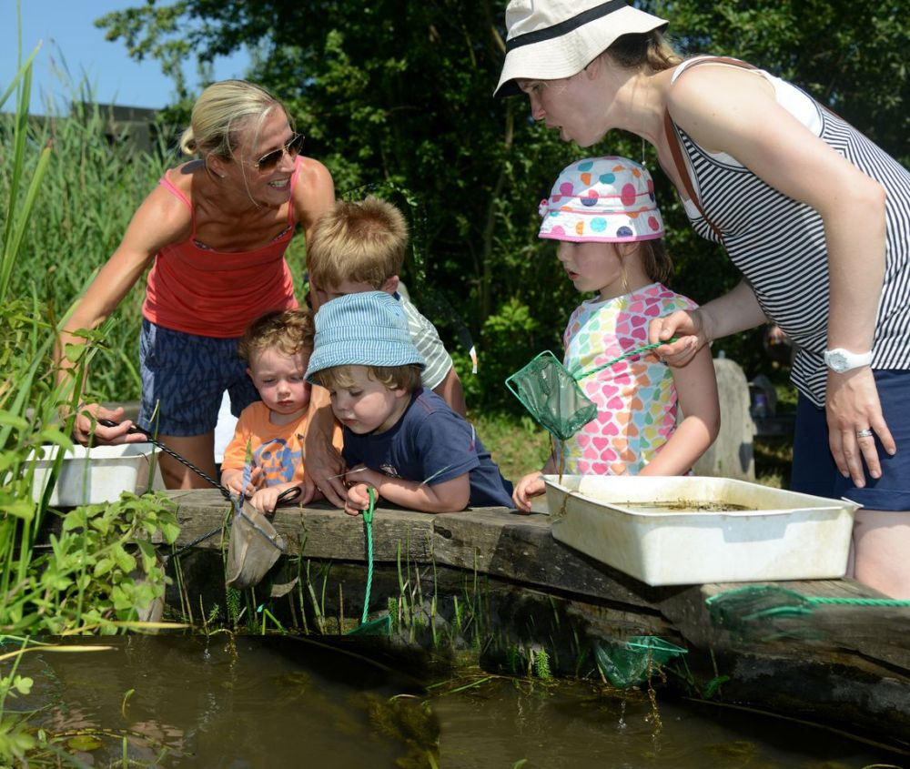 Family pond dipping by Stephen Morris